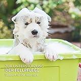 AniForte pflanzliches Neemöl Shampoo 400 ml Hundeshampoo parfümfrei – Naturprodukt für Hunde - 4