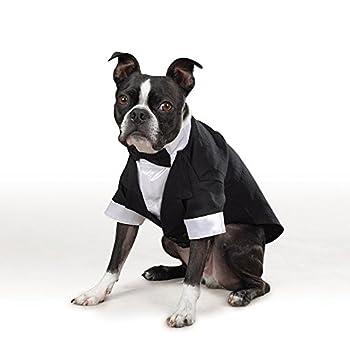 Best pug tuxedo Reviews