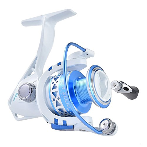 KastKing Summer Spinning Angelrolle Neu für 2016 Sonderangebot Great Christmas Fishing Gift Angekommen (Summer2000)
