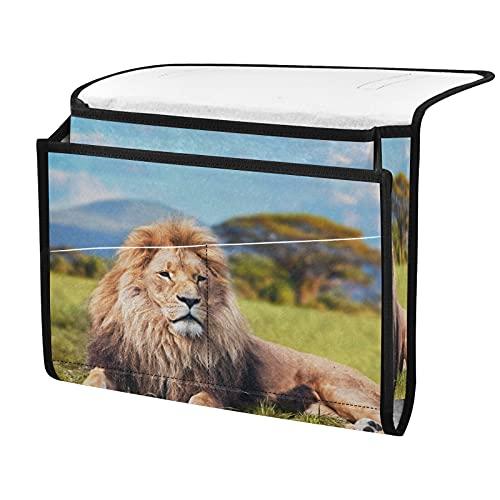 Organizador de almacenamiento para mesilla de noche, león de animales africanos, junto a la caja, organizador de almacenamiento para mandos a distancia gafas de teléfono