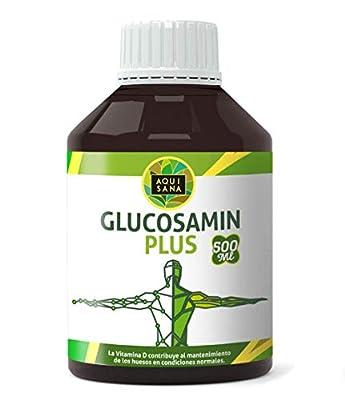 Glucosamin Chondroitin | Glucosamin und Chondroitin Supplement mit msm - Für die Gesundheit der Gelenke Gesunde Knochen und Knorpel Flüssiges Glucosamin 500 ml - Aquisana