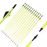 MZZG 32 Pulgadas de Carbono Flechas de Fibra de Carbono Flecha Spine 500 con 3' TPU Plumas de plástico 100 Puntos Grano para Recurve Bow y Tradicional Largo Arcos (12 Pack)