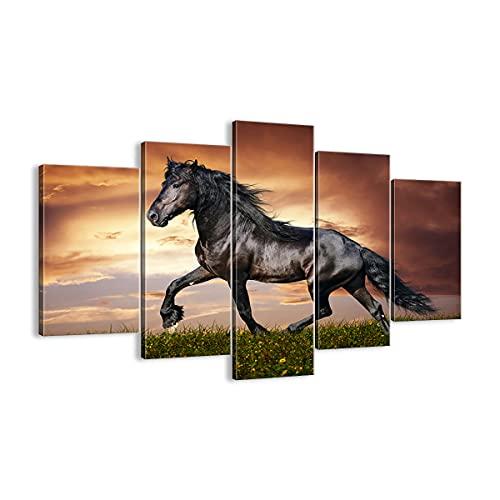 Cuadro sobre lienzo - Impresión de Imagen - Caballo animal Pradera - 150x100cm -...