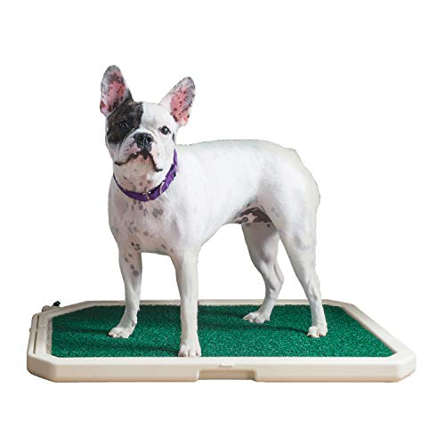 piddle pads for dogs