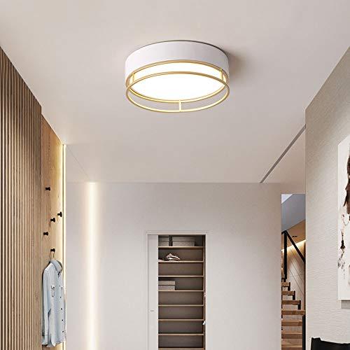 S-L Lámpara de techo led moderna Lámpara regulable Lámpara regulable Lámpara de techo redonda, 12W Entrada Corredor Colgante Luces Araña, Linterna de decoración de interior para sala de estar dormitor