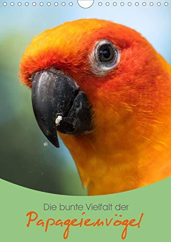 Die bunte Vielfalt der Papageienvögel (Wandkalender 2021 DIN A4 hoch)