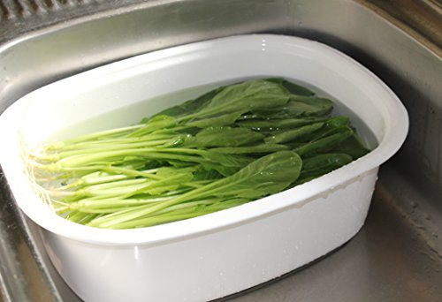野田琺瑯『楕円型洗い桶』