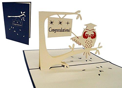 Lin Pop Up de tarjetas de felicitación 3d Tarjetas Tarjetas de felicitación para minimalista, búho con birrete (en inglés)