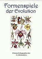 Formenspiele der Evolution. Chromolithographien des 19. Jahrhunderts (Wandkalender 2022 DIN A2 hoch): Unendliche Vielfalt, erschaffen in Jahrmillionen. (Monatskalender, 14 Seiten )