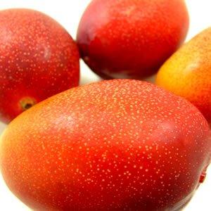 宮崎県産完熟マンゴー 3個入り ( 1個:230〜300g ) 宮崎マンゴーの最高等級品