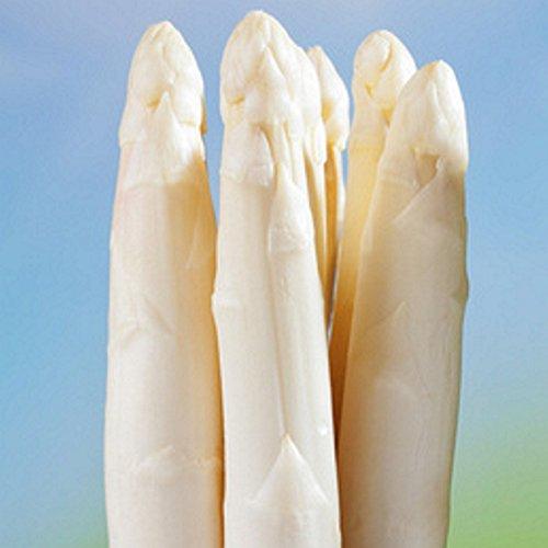 Spargelpflanzen Huchels Leistungsauslese weißer Spargel (25 Pflanzen)