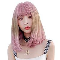 LiWen Zheng 新しいかつらの女性のグラデーションは、ピンクの髪のファッション現実的な化学繊維フードを強調しています (Color : Multi-colored)