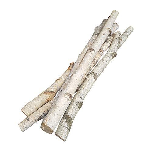 5 Birkenäste | weißer Aste | 50 cm lang u. 3-5 cm breit | Natur-Deko für Bodenvasen | Tisch-Deko mit Birkenzweigen