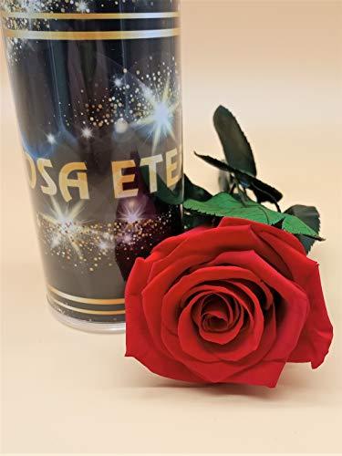 Almaflor Rosa eterna Rojo Light Extra. Gratis TU ENVÍO Prime. Rosa preservada roja Light Extra. Tarjeta dedicatoria y Envoltorio de Regalo. Hecho en España.