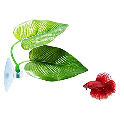 CousDUoBe Betta Fish Leaf Pad - Improves Betta's Health by Simulating The Natural Habitat? Double Leaf Design, one Big and one Small ?