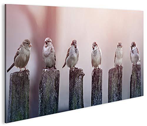 islandburner Bild Bilder auf Leinwand Birds Vögel Spatz auf Holzsteg 1K XXL Poster Leinwandbild Wandbild Dekoartikel Wohnzimmer Marke