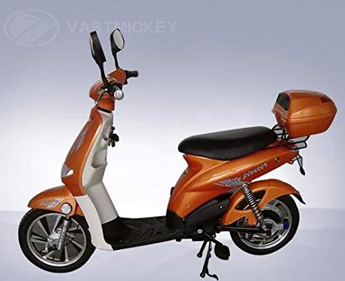 Vastmickey Scooter Elettrico Bicicletta Elettrica a Pedalata Assistita 250w 12Ah Batteria al Piombo
