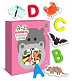 Large Magnetic Letters Review and Comparison