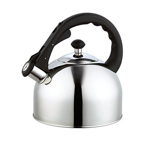Homeinart Whistling Tea Kettle Stainless Tea Kettles Stovetop 2.6 QT