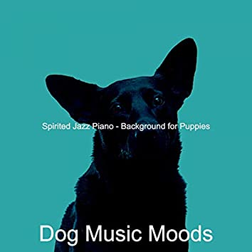 Spirited Jazz Piano - Background for Puppies