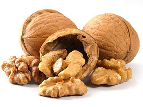 Walnuts 5 ☆ very popular In-shell Whole Outlet ☆ Free Shipping 2 LB