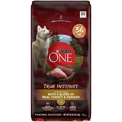 Purina ONE High Protein Natural Dry Dog Food SmartBlend True Instinct With Real Turkey amp Venison  36 lb Bag