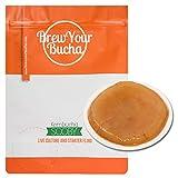Brew Your Bucha Kobucha SCOBY con Starter Fluid. SCOBY cultivado con azúcar y té de Oro...