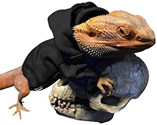 Best bearded dragon clothes Reviews