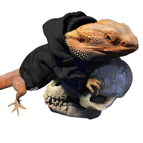 WATFOON Lizard Clothes for Bearded Dragons Reptile Apparel 100% Handmade Cotton Material Hoodies Sweater T-Shirt for Skin Protection Photo Party (M, Black)