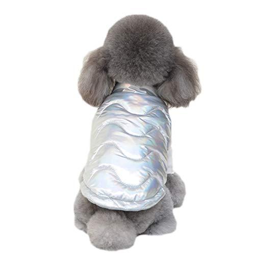 ZWW Honden winterjas, mode cool verdikte warme jas met hoge kraag winddicht katoenen vest voor koud weer voor kleine honden