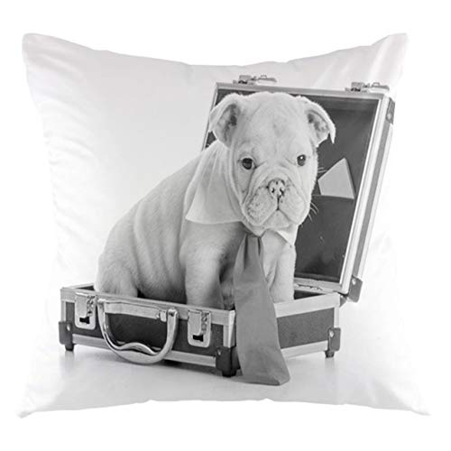 FULIYA English Bulldog Throw Pillow Cushion Cover Tie Wearing Puppy Sitting Inside a Briefcase Greyscale Illustration Decorative Square Accent Pillow Case, 20' X 20',Grey Pale Grey