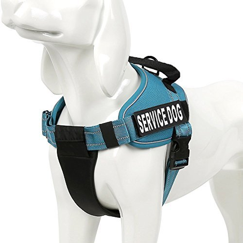 Chai's Choice Service Dog Vest Harness Best Truelove Model with 2 Reflective Service Dog Patches and Sturdy Handle. Matching Padded 3M Reflective Leash Available (X-Large, Blue)