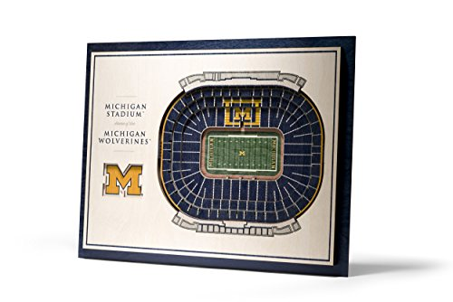 NCAA Michigan Wolverines Youthefanyouthefan NCAA 5-Layer 17