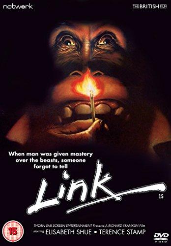 Link [DVD] [Import]