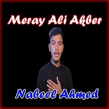Meray Ali Akber - Single