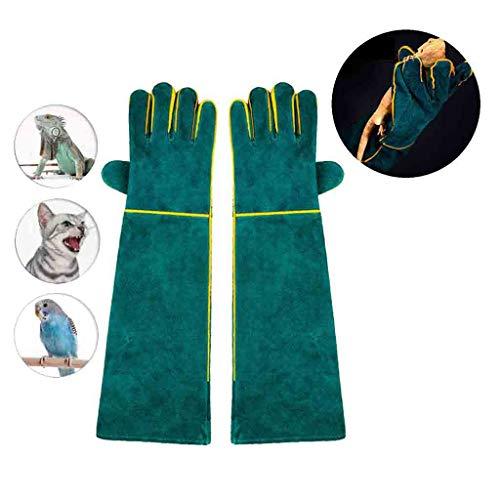 Wwjpet Dieren handschoenen anti-bits kras handschoenen veilig duurzaam ademend zeildoek voering voor baden grooming van de omgang met hond kat vogel snake parrot groen
