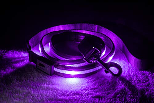 Blazin' Safety LED Dog Leash - USB Rechargeable Flashing Light, 6 Ft, Water Resistant – Avoid Danger – Purple