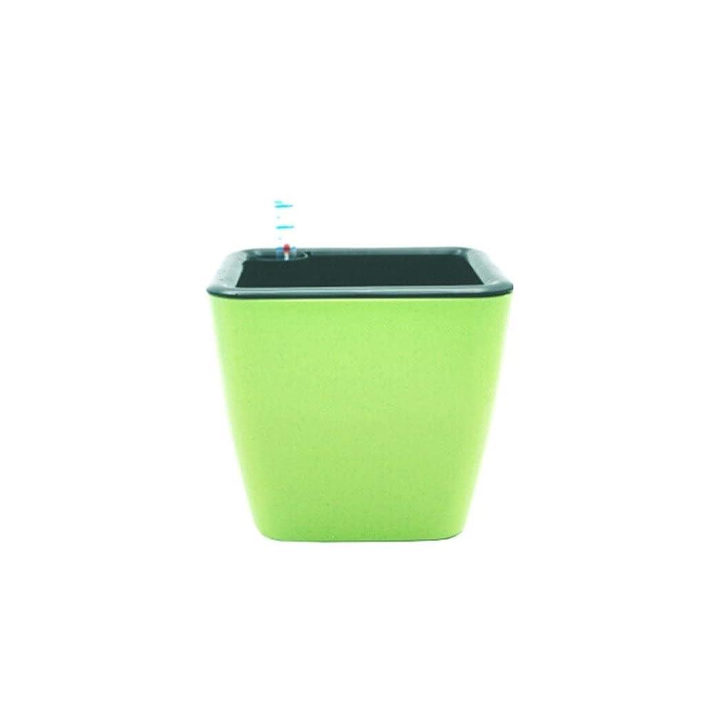 ノミネートワイン手荷物MYQXAZ 植木鉢、創造的な植木鉢、自動吸水ポット、樹脂製植木鉢。(緑、18×16cm) (Color : Green)