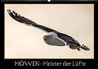 Moewen - Meister der Luefte (Wandkalender 2022 DIN A2 quer): Moewen in ihrer natuerlichen Umgebung. (Monatskalender, 14 Seiten )