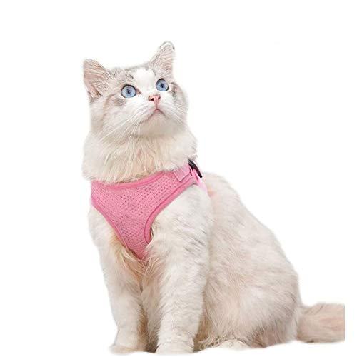 HYDT Harnais pour Chien Chat Gilet réfléchissant Sangle de Poitrine pour Animal de Compagnie Harnais pour Chien Respirant et Laisse de Marche pour Petits Chiens de Taille Moyenne