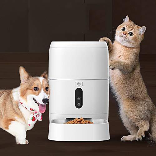 Hancoc Blanco inteligente control remoto mascota perro gato alimentador automático 6L gran capacidad grabable cámara de alimentación de la máquina cuenco sincronización cuantitativa fuente de alimenta