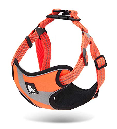 WINHYEPET Dog Harness Adjustable Outdoor Pets Vest Reflective Oxford Material Strap Training Easy Control for Small Medium Large Dogs WHP15991 (Orange,S)