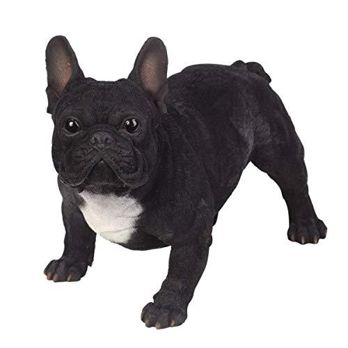 Pacific Giftware PT Realistic Large Size Statue Black and White French Bulldog Animal Dog Decorative Resin Figurine