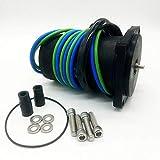 SSI Marine Motor de ajuste de potencia para Johnson fueraborda 40 hp 50 hp 4 tiempos 1999-2006 5034361