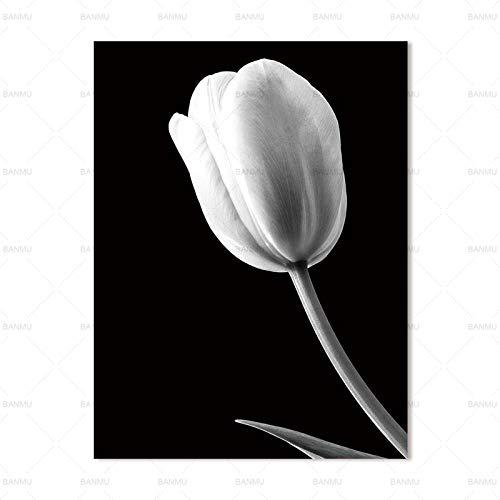 Moderne einfache Schwarz-Weiß-Blumenbilder für die Inneneinrichtung 20X30cm