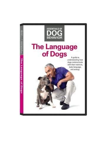 Cesar Millan The Language of Dogs Sprache der Hunde Grundlagen der Hundeerziehung DVD™