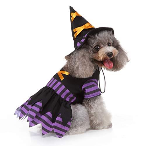 - Kleinen Hund Halloween Kostüme