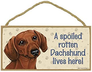SJT ENTERPRISES, INC. A Spoiled Rotten Dachshund (Brown) Lives here Wood Sign Plaque 5