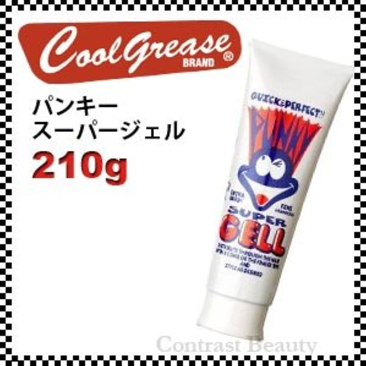 の間で正確さスポンサー【X5個セット】 阪本高生堂 パンキー スーパージェル 250g