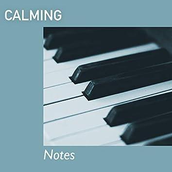 # 1 Album: Calming Notes